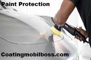 paint-correction-buffing-0853.111.111.79 coatingmobilboss.com