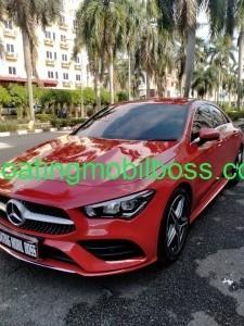 Premium Coating 0853.111.111.79 coating mobil boss
